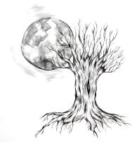 Vollmond Illustration